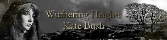 嵐ヶ丘[歌詞和訳・加筆修正版]ケイト・ブッシュ:Kate Bush - Wuthering Heights